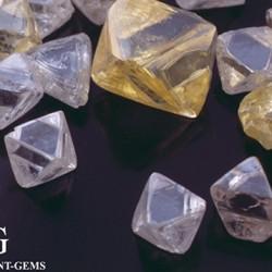 Diamants bruts de forme octaédrique idéale
