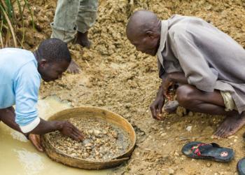 Recherche de diamants bruts dans une rivière avec un tamis